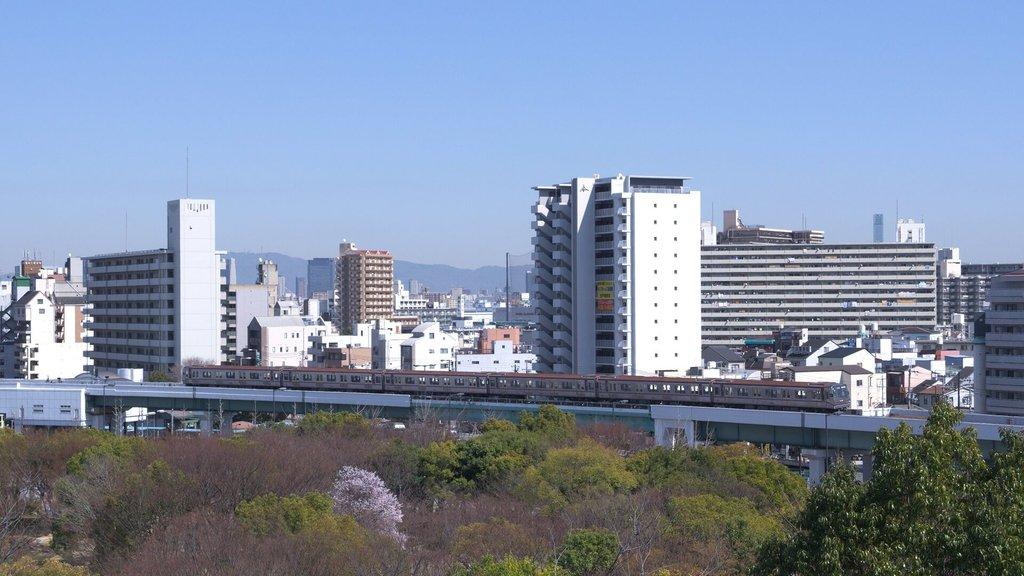 22_daimu