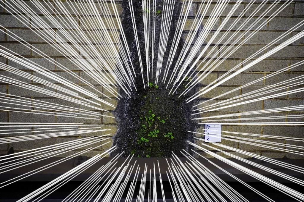 【御堂筋線】「草不可避」な中津駅の様子をご覧下さい