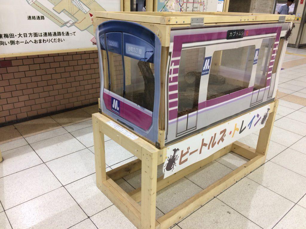 【谷町線】カブトムシを展示する「ビートルズトレイン」を今年も開催